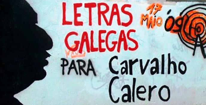 Letras galegas: moito onde elexir